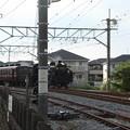 秩父鉄道 パレオエクスプレス 5002レ C58 363+12系客車4B 石原付近 (1)