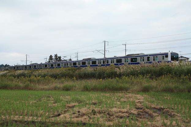 稲刈り後の光景を行くE531系 (6)