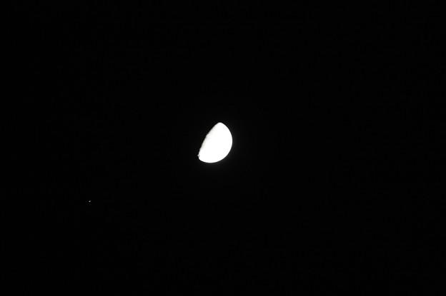 弦月 (3)