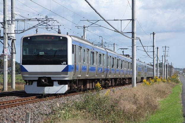 常磐線 E531系K402編成 372M 普通 上野 行