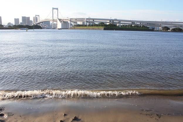 お台場海浜公園 20180923_07