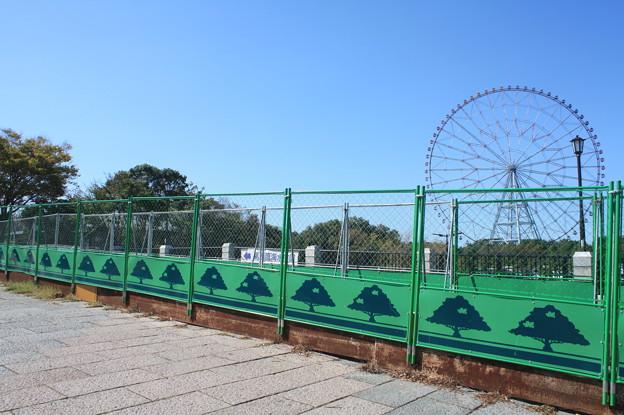 Photos: 葛西臨海公園 20181021_08