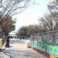 Photos: 葛西臨海公園 20181021_10