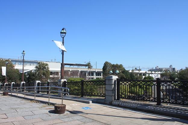 Photos: 葛西臨海公園 20181021_12