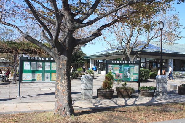 葛西臨海公園 20181021_17