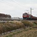 安中貨物 5094レ EH500-54+タキ (1)