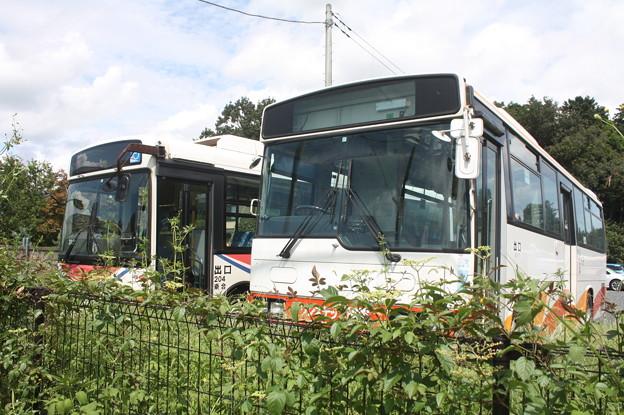 茨城交通鯉渕営業所に南海バスと川越観光自動車留置