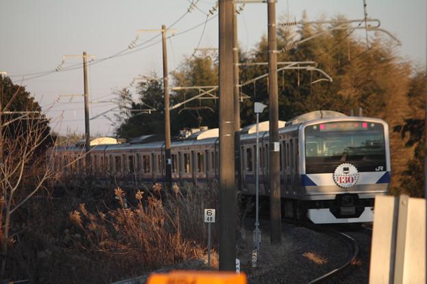 水戸線 E531系K462編成「水戸線開業130周年」ヘッドマーク 宍戸駅発車 後追い (1)