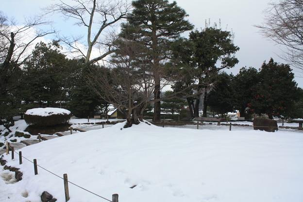 兼六園観光 20181230_53