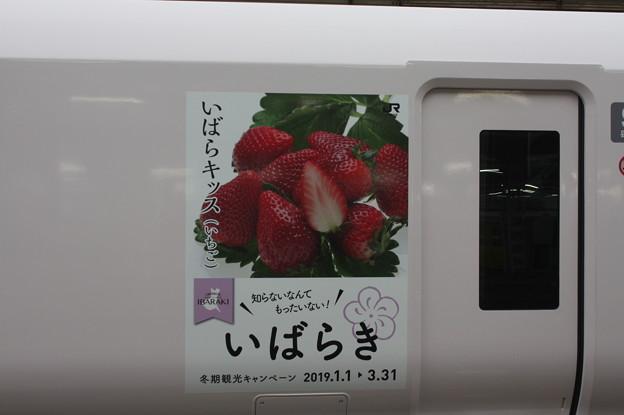 E657系 9号車 いばらき冬期観光キャンペーン ステッカー