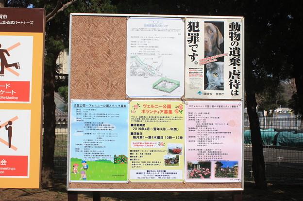 横須賀ヴェルニー公園 散策 20190302_107