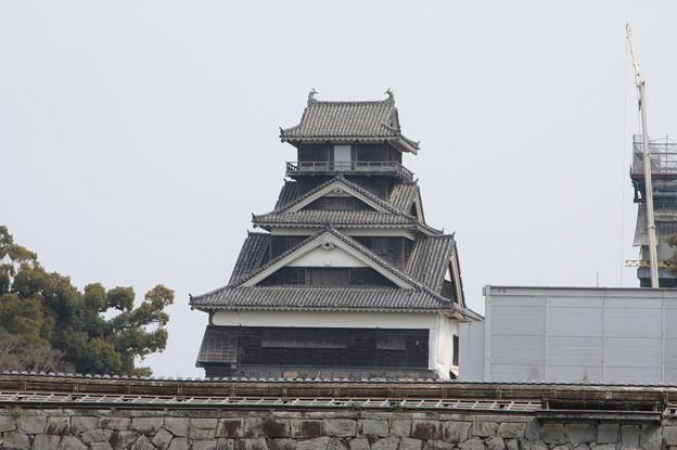 熊本城観光 20190322_22