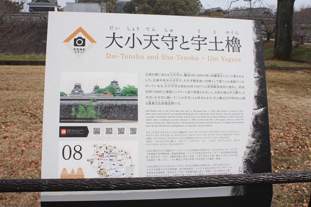 熊本城観光 20190322_26