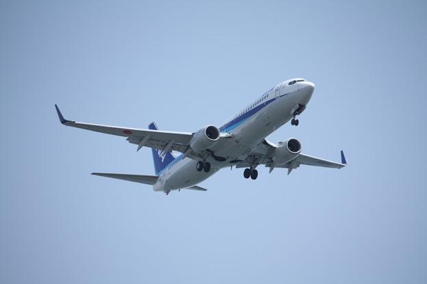 全日空 ANA B737-800 JA80AN (1)