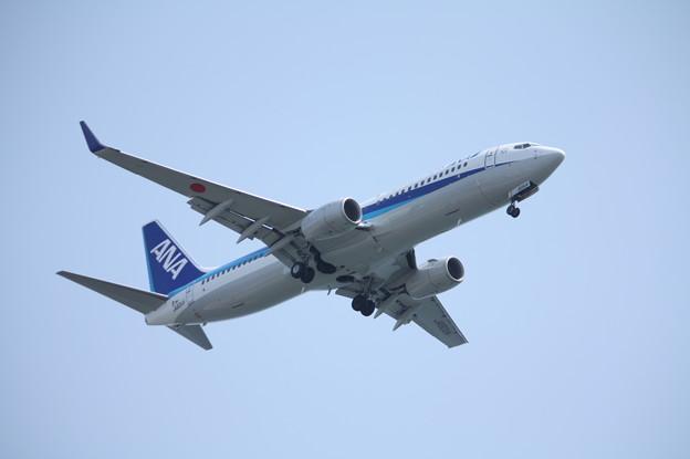 全日空 ANA B737-800 JA80AN (3)