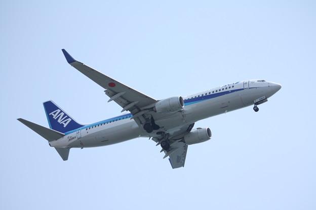 全日空 ANA B737-800 JA69AN (5)