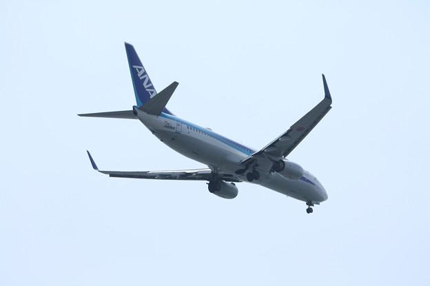 全日空 ANA B737-800 JA69AN (6)