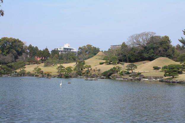 水前寺公園 20190322_51