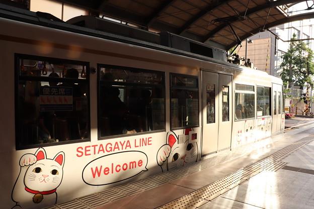 東急世田谷線 300系 招き猫電車 側面 (3)