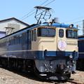 Photos: EF65 1102 「さくら」ヘッドマーク