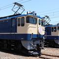 Photos: EF65 2101 「さくら」ヘッドマーク