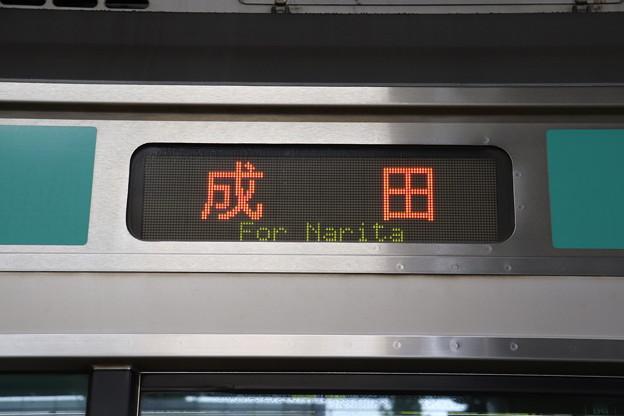 常磐快速線 E231系 側面方向幕 成田