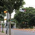 Photos: 千駄ヶ谷周辺散策 20190706_14