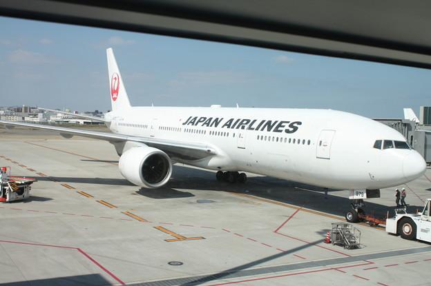 日本航空 JAL B777-200 JA8979
