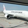 Photos: 日本航空 JAL B777-200 JA8979