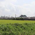 夏の田園風景を行くE657系 (2)