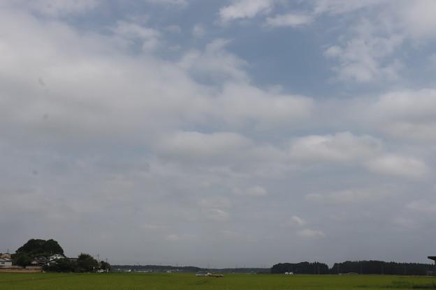 夏の風景 20190811_10
