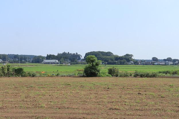 夏の風景 畑 20190818_06