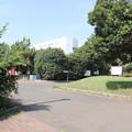 Photos: 城南島海浜公園 20190817_06