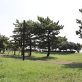 Photos: 城南島海浜公園 20190817_07