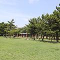 Photos: 城南島海浜公園 20190817_40
