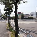 Photos: 城南島 20190817_03