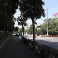 Photos: 城南島 20190817_10