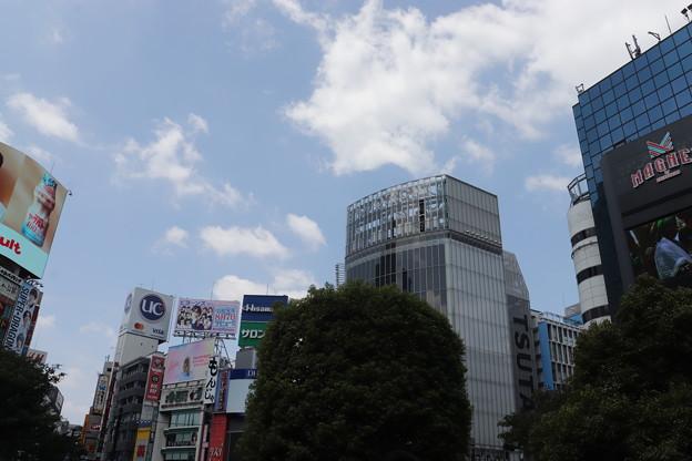 渋谷 20190817_03