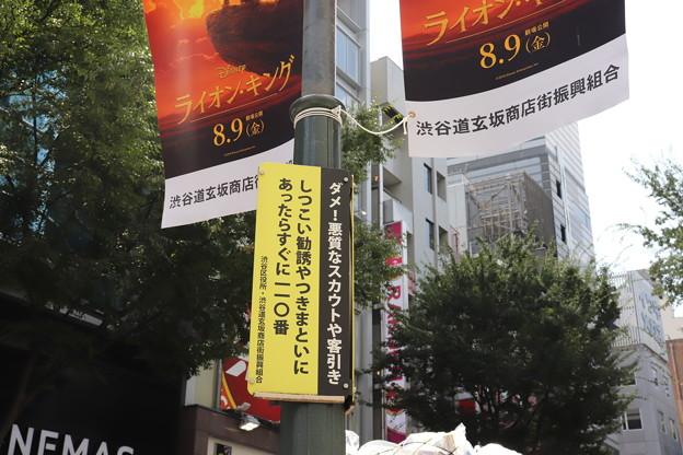 渋谷 20190817_17