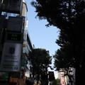 Photos: 渋谷 20190817_27