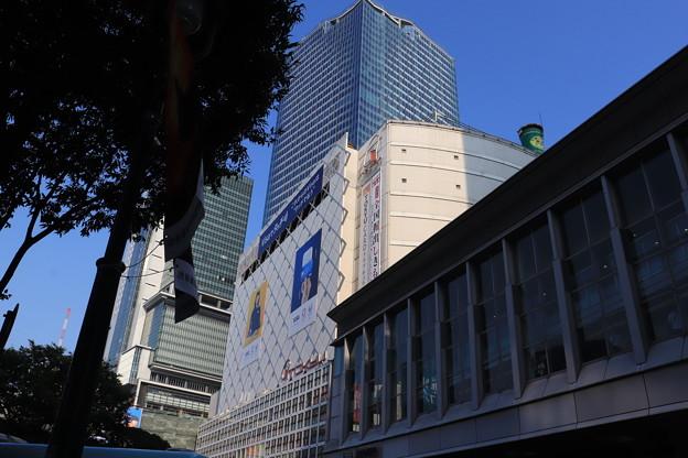 渋谷 20190817_33