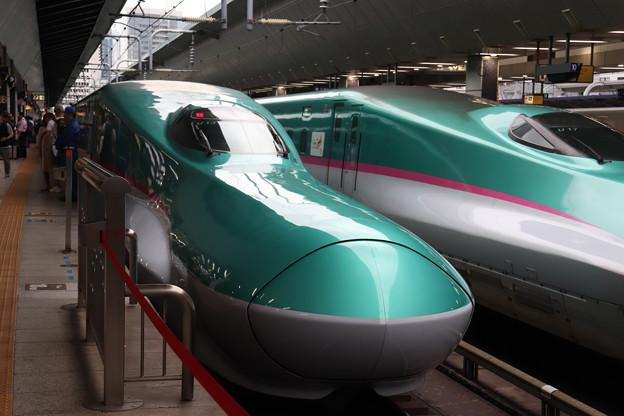 東北新幹線 E5系U13編成 (2)