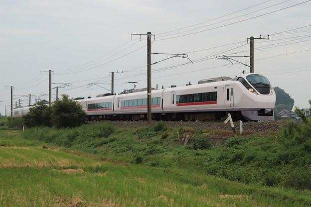 秋の田園風景を行くE657系 2019.09.28 (8)