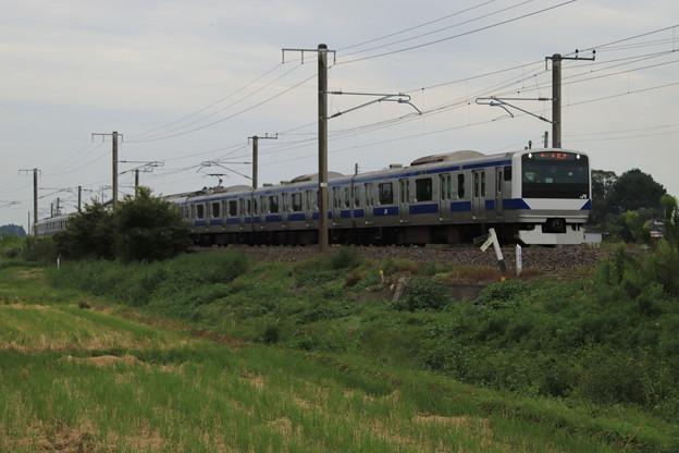 秋の田園風景を行くE531系 2019.09.28 (11)