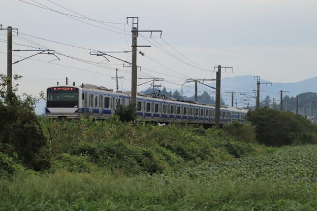 秋の田園風景を行くE531系 2019.09.28 (12)