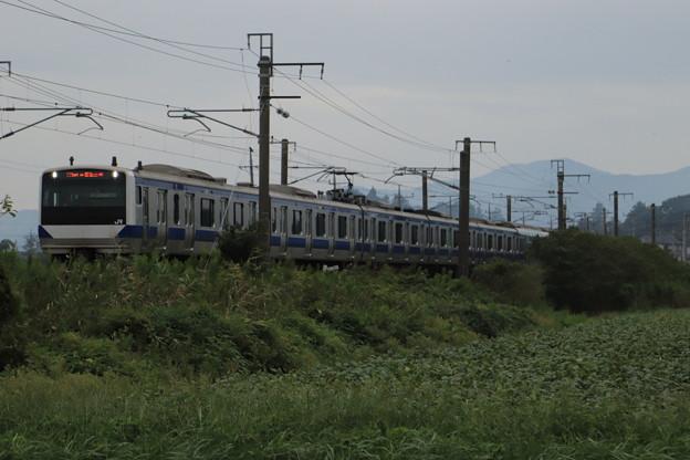 秋の田園風景を行くE531系 2019.09.28 (13)