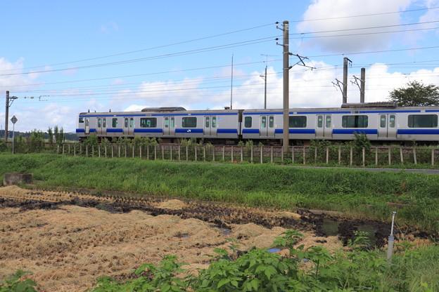 秋の田園風景を行くE531系 2019.09.08 (1)