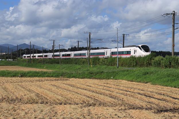 秋の田園風景を行くE657系 2019.09.08 (2)