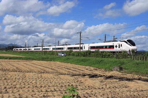 秋の田園風景を行くE657系 2019.09.08 (5)