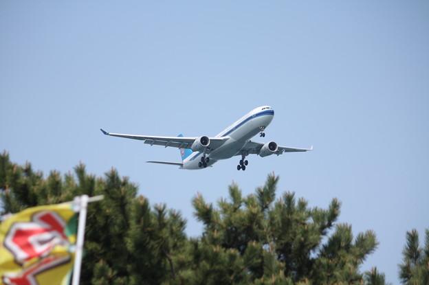 中国南方航空 A330-300 B-8362 (1)